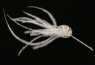 Love & Lace Feather Bobby Pin