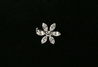 Daisy Crystal Small Brooch